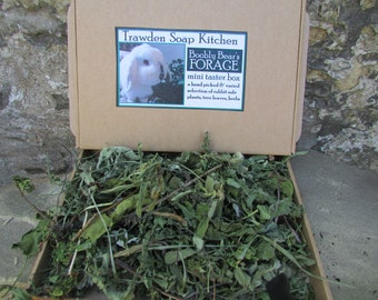 Boobly Bear's Dried Forage For Rabbits - Taster Box - Contains a wide variety of bunny safe tree leaves, plants and herbs - letterbox sized