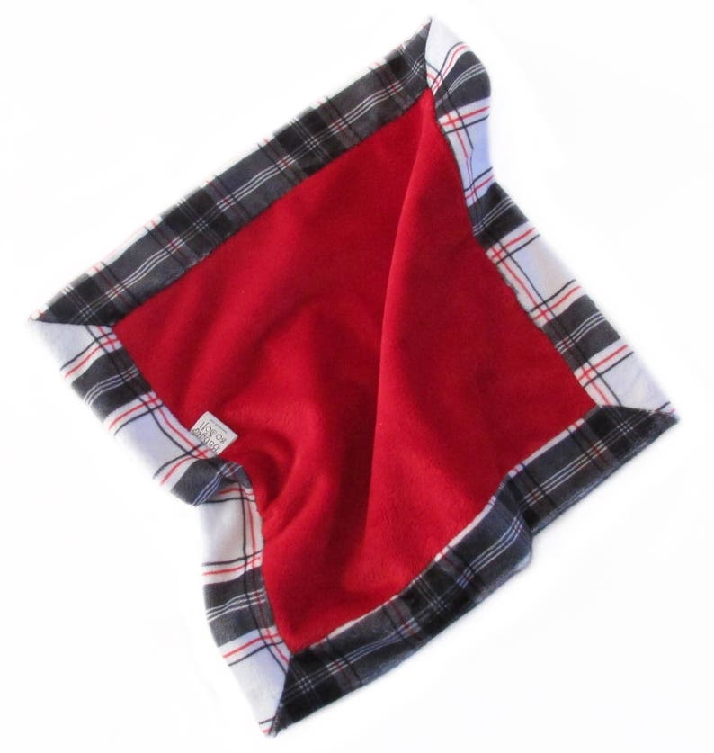 Security Blanket  Baby Lovey  Mini Blanket  Minky Lovey  image 0