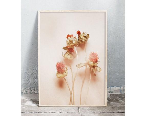 Photography art digital download of dried orange flowers. Natural tones printable wall art.