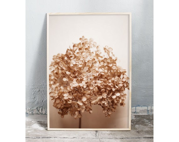 Photography art digital download of dried hydrangea. Natural tones printable wall art.