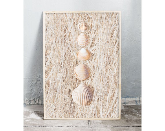 Photography art digital download of sea shells on dried grass. Natural tones printable wall art.