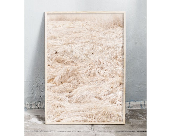 Photography art digital download of dried grass. Natural tones printable wall art.