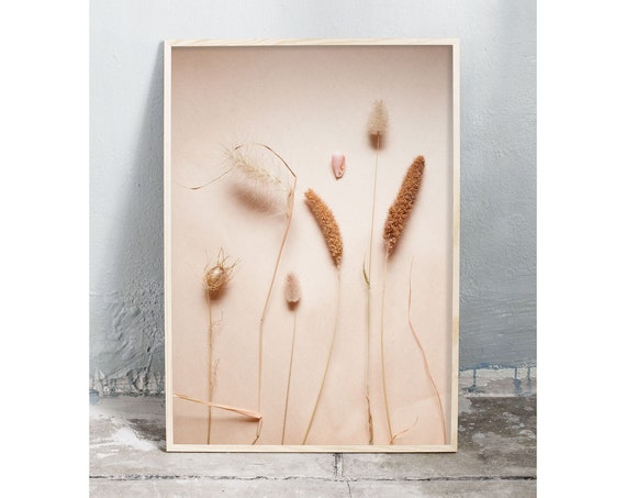 Photography art digital download of dried grass and a small sea shell. Natural tones printable wall art.