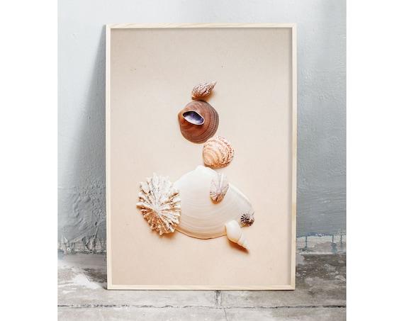 Photography art digital download of collection of small sea shells. Natural tones printable wall art.