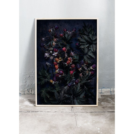 Moody art photography print of colourful blackberries on a dark background. The print is printed on beautiful, high quality, matte paper.