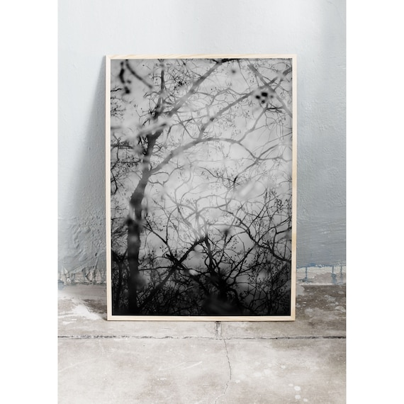 Digital downloadable art photography in black and white of tree reflections in a lake