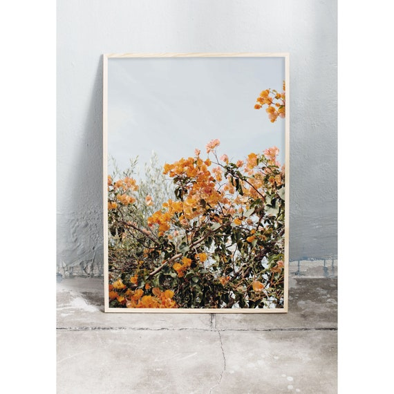 Photography art print of a burnt orange bougainvillea on Crete in Greece. Printed on a high quality, matte paper.