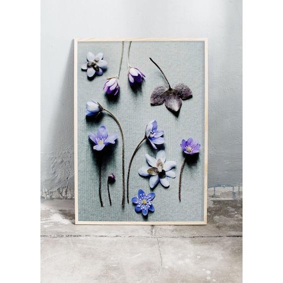 Photography Print, Hepatica, Wall Art, Nature Art, Flower Print, Purple, Nature Print, Garden Wall Art, Art Print, Flowers