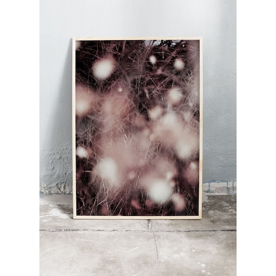 Abstract art photography print of snowberries and dried grass in the colours pink and burgundy. Printed on a high quality, matte paper.