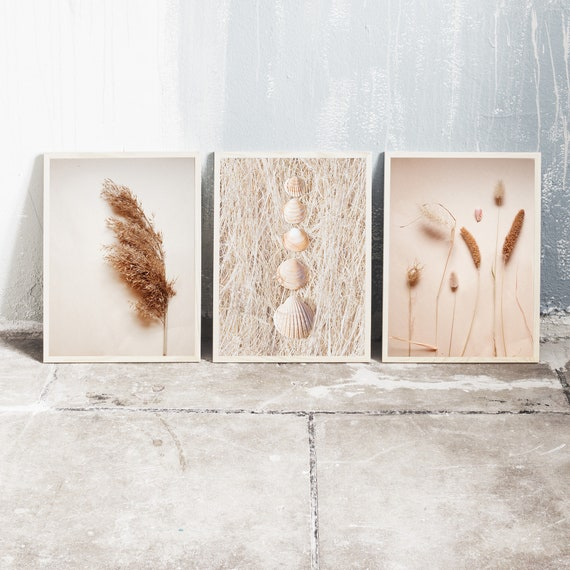 Set of 3 downloadable and printable photography prints, natural tones wall art, 3 images with sea shells, dried grass and dried flowers.