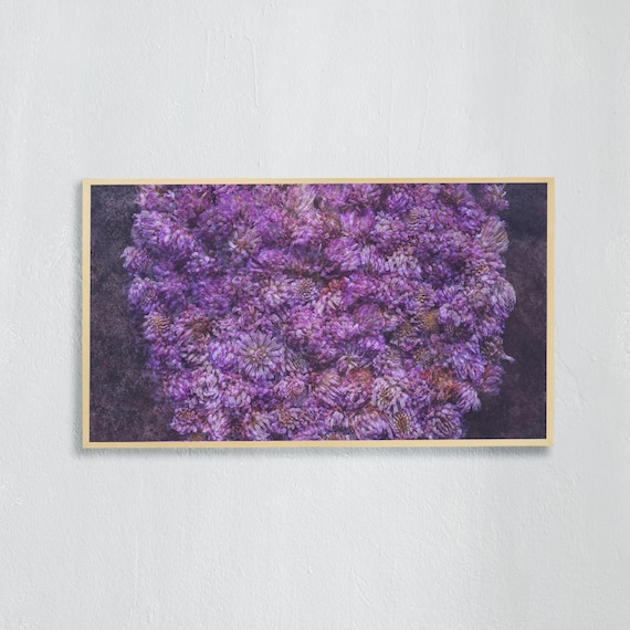 Frame TV Art, Digital downloadable art photography, Art photo of purple wild clover flowers, Art for digital TV