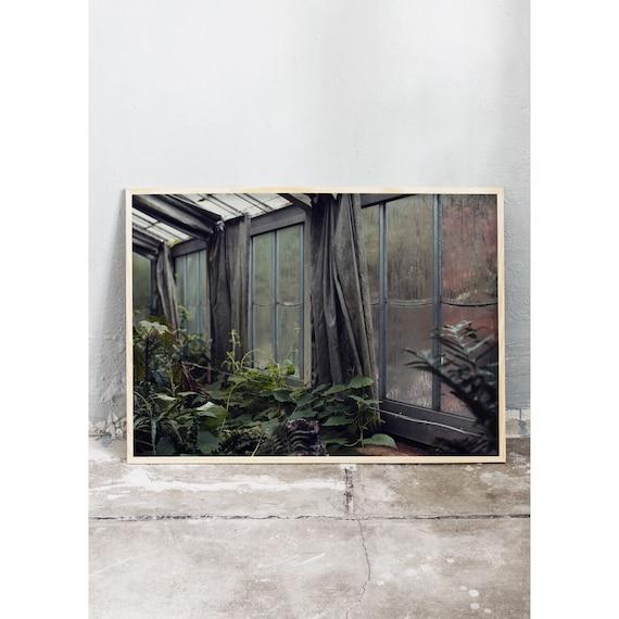 Photography Print, Copenhagen no 4, In the Greenhouse, Wall Art, Nature Art, Green, Wild, Mint Green Wall Art, Art Print, Flower