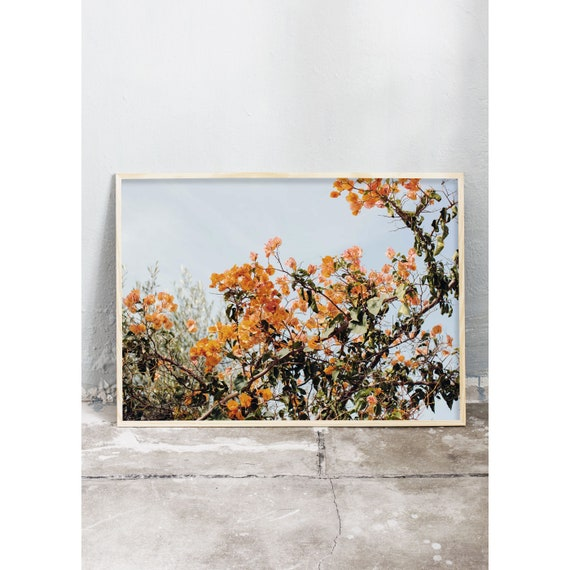 Photography art print of a burnt orange coloured Bougainvillea in Greece. Print is printed on a high quality, matte paper.