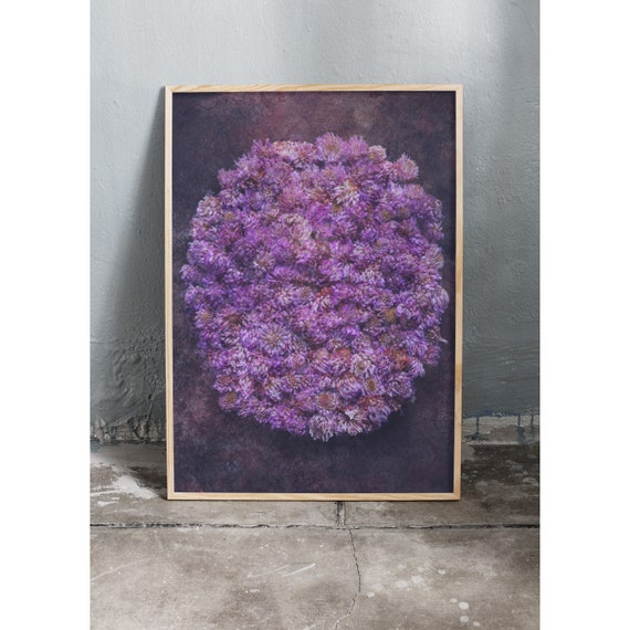Photography art print of blue and purple wild clove flowers. Printed on a high quality paper and a limited edition of the largest format.