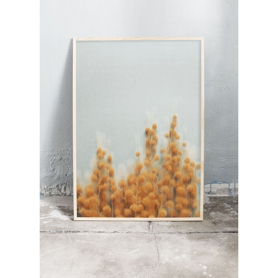 Art photography print of the yellow, spring flower mimosa. Photography art print printed on a matte, high quality paper.
