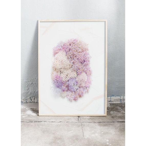 Photography art print of pink and purple wild flowers. Print is printed on a high quality paper and a limited edition of the largest format.