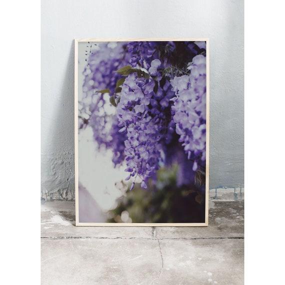 Photography Print, Wisteria no 1, Wall Art, Nature Art, Flower Print, Purple, Nature Print, Garden Wall Art, Art Print, Flowers