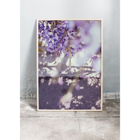 Photography Print, Art, Wisteria, Wall Art, Nature Art, Flower Print, Purple, Nature Print, Garden Wall Art, Art Print, Flowers