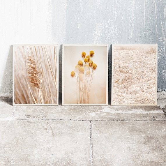 Set of 3 downloadable and printable photography prints, natural tones wall art, reed grass, billy balls and a dried grass meadow.