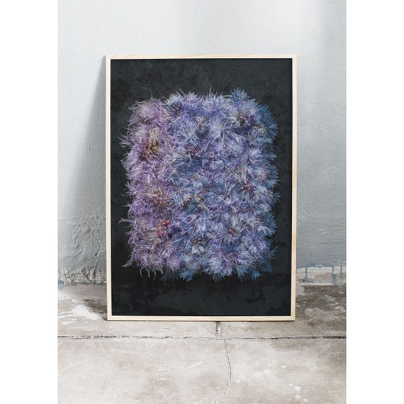 Photo art print of blue and purple flowers and blackberries. Printed on a high quality paper and a limited edition of the largest format.