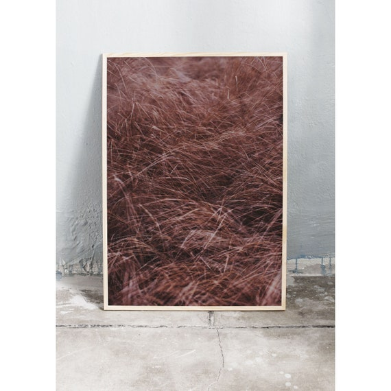 Art photography print of brown grass in the autumn out in the wild nature. Print is printed on a high quality, matte paper.