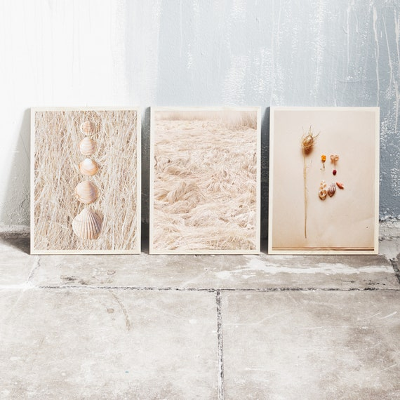 Set of 3 downloadable and printable photography prints, natural tones wall art, 3 images with sea shells and dried grass