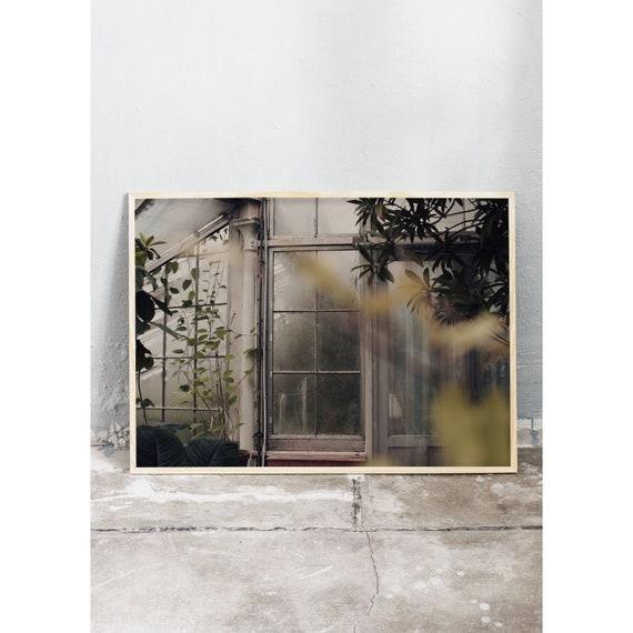 Photography Print, Copenhagen no 2, In the Greenhouse, Wall Art, Nature Art, Green, Wild, Mint Green Wall Art, Art Print, Flower