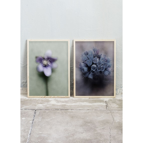 Photography, Art, Set of 2, Art Prints, Wall Art,  Flowers, Color Print, Blue, Nature, Purple, Spring Flowers, Still life art
