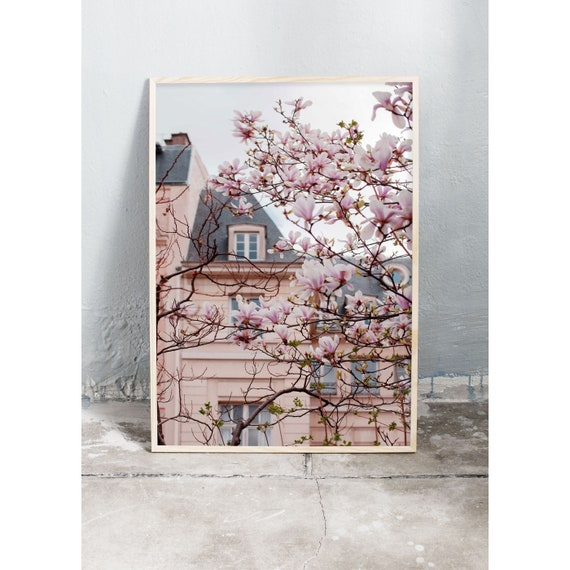 Photography art print of pink magnolias in bloom infront of a pink building in Paris. Print is printed on a high quality, matte paper.
