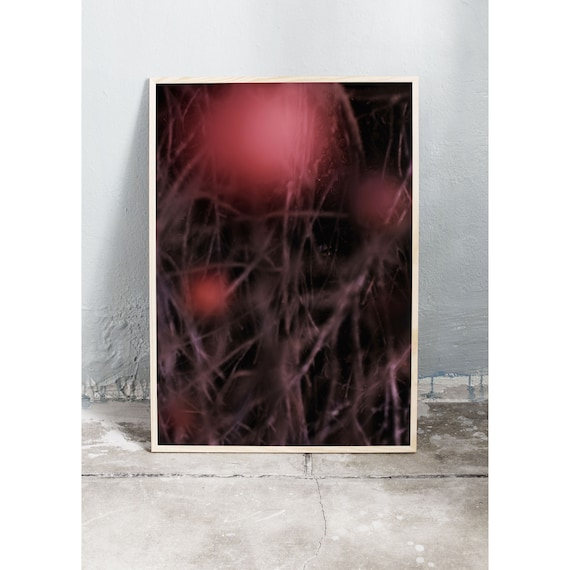 Abstract photography art print of the rose hip bush. Print is printed on a high quality, matte paper.