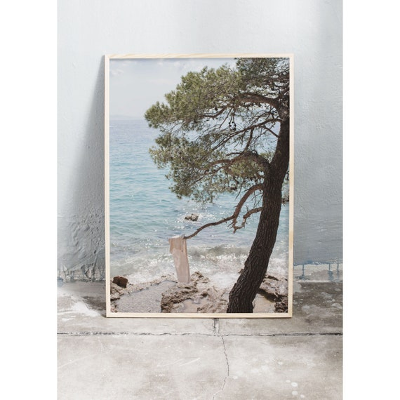 Art photography print of a tree on an empty beach by the glittering ocean in Croatia. Printed on a matte high quality paper.