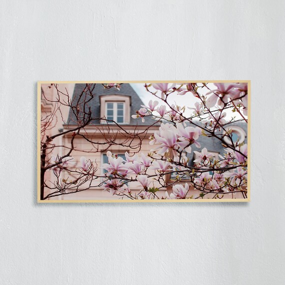 Frame TV Art, Digital downloadable art photography, Art photo of pink magnolias in front of a pink building in Paris, Art for digital TV