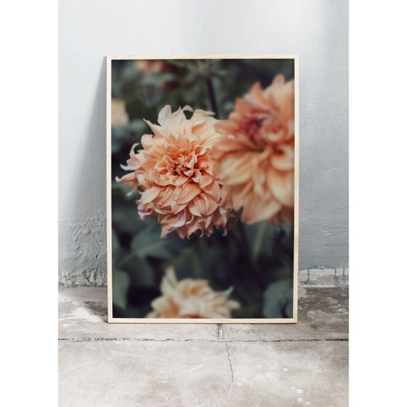 Photography Print, Dahlia, Wall Art, Nature Art, Flower Print, burnt orange, Nature Print, Garden Wall Art, Art Print, Flowers, Blossoms