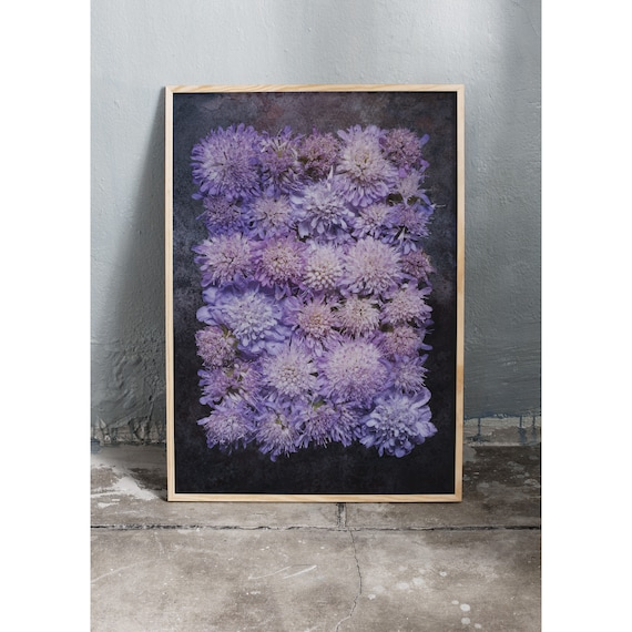 Photography art print of purple wild flowers. Print is printed on a high quality paper and a limited edition of the largest format.