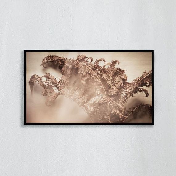 Frame TV Art, Digital downloadable art photography, Art photo of brown, dried fern, Art for digital TV