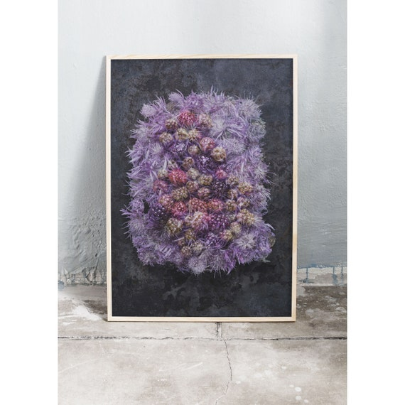 Photography art print of purple wild flowers and blackberries. Printed on a high quality paper and a limited edition of the largest format.