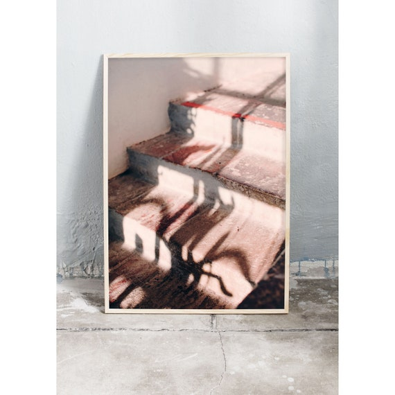 In the Cactus Greenhouse no 5, Photography, Print, Wall Art, Art, Shadow Play, Pink, Pink Wall Art, Corall, Art Print, Stairs, Sunshine