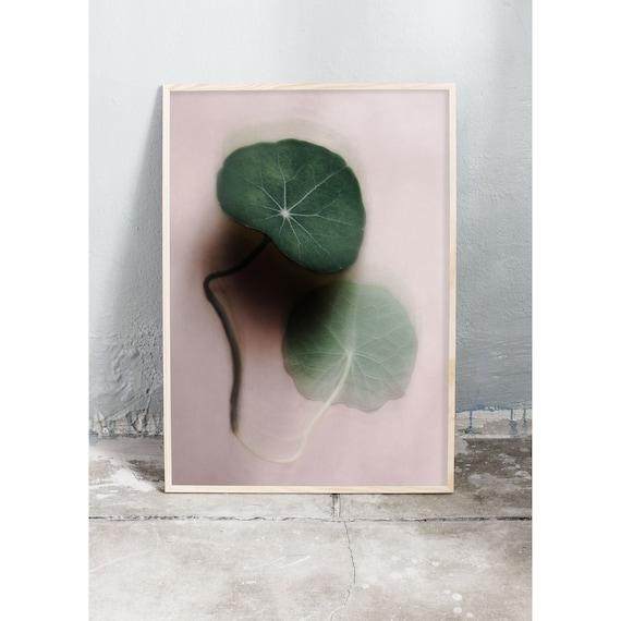 Photography Print, Art, Nasturtium Leaf, Wall Art, Nature Art, Fern Print, Green, Nature Print, Forest Wall Art, Art Print, Soft, Leaves