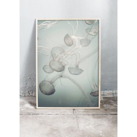 Photography Print, Jellyfish, Color Print, Home Decor, Photo, Photographic Print, Art Print, Light Print, pastel Art, Nursery Wall Art,