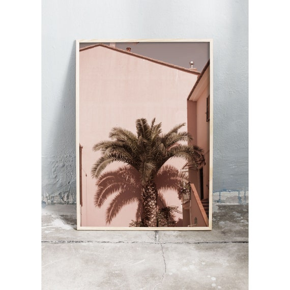 Photography art print of a palm tree set against a pink building photographed in Italy. Printed on high quality, matte paper.