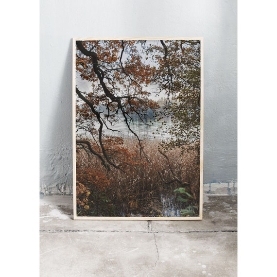 Photography Print, Art, By the Lake, Color Print, Wall Decor, Photography Print, Wall Art, Photo Art, Photography, Nature Art