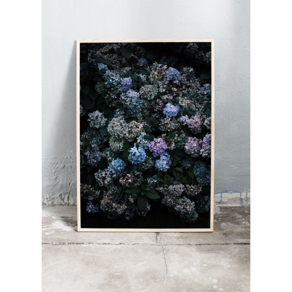 Photography Print, Hydrangea, Wall Art, Nature Art, Flower Print, Purple and Blue, Nature Print, Garden Wall Art, Art Print, Flowers