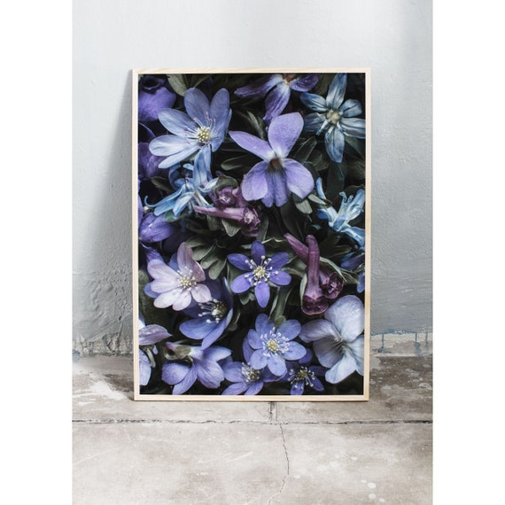 Photography art print of different blue and purple wild spring flowers. Print is printed on a high quality, matte paper.