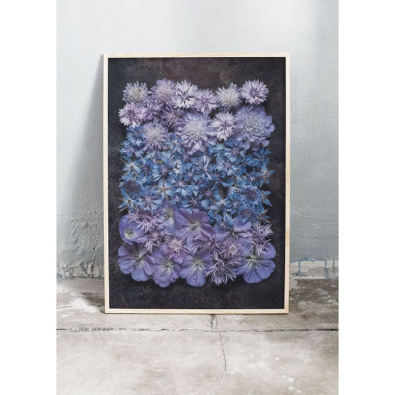 Photography art print of blue and purple wild flowers. Print is printed on a high quality paper and a limited edition of the largest format.