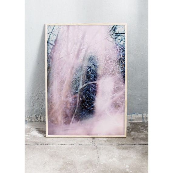 Nature photography art print of blackthorn and grass in the colors pink and blue. Printed on a high quality, matte paper.