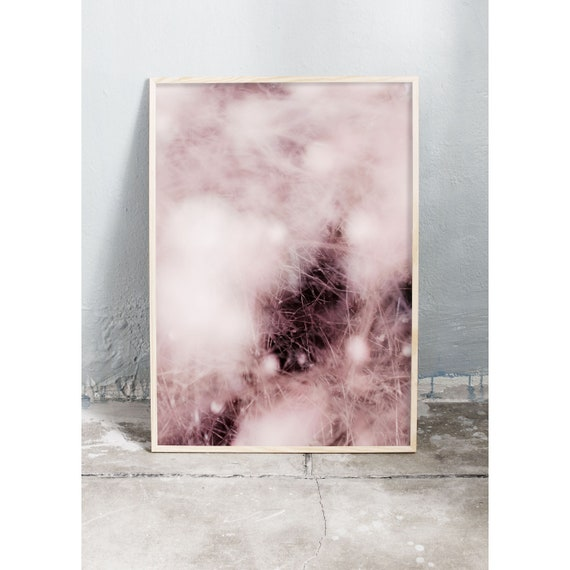 Abstract art photography print of snowberries and dried grass in the colours pink and burgundy. Printed on high quality, matte paper.