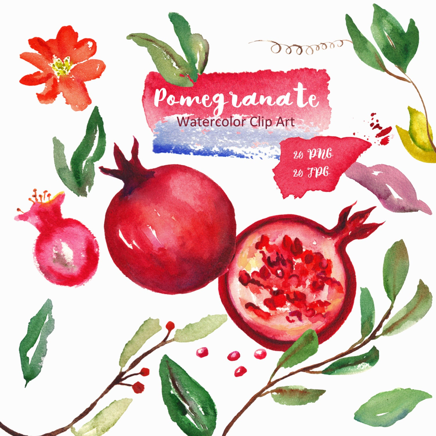 Watercolor Clipart Red Fruits Digital Clipart Hand Drawn Etsy