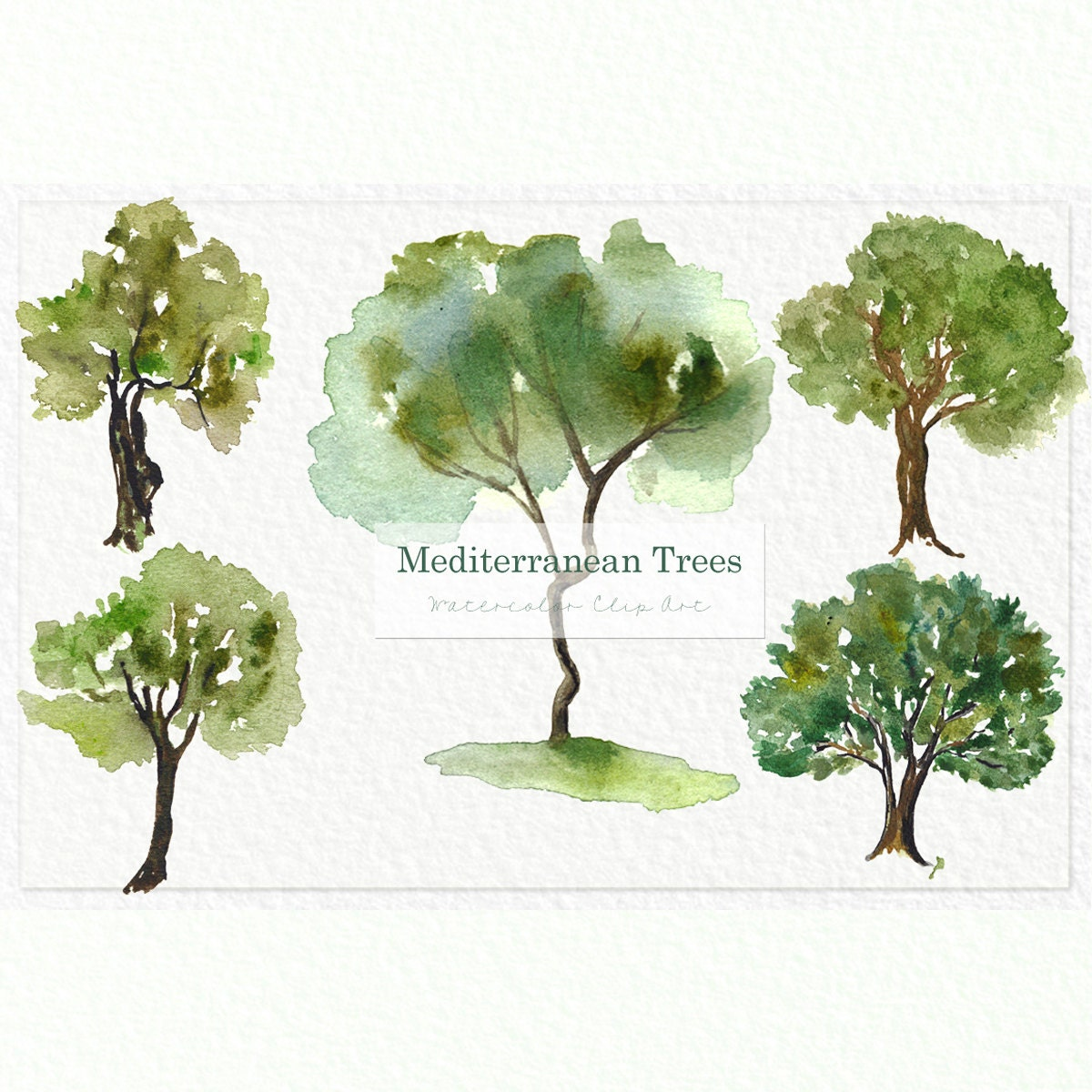 Wedding Tree Watercolor Clipart: Mediterranean TREES. Watercolor Clip Art. Digital