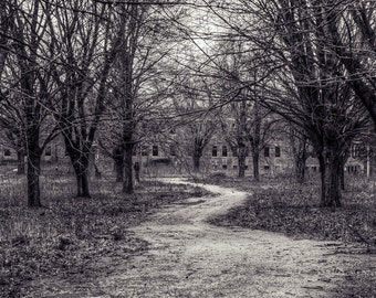 Path Through the Woods Abandoned Mental Institution & Hospital Complex.  Urbex, Urban Decay Photography