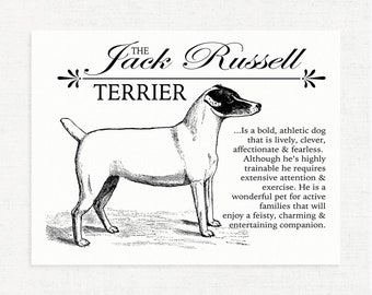 Jack Russell Terrier (JRT) - Typography Wall Art Print on Canvas Paper With Dog Breed Dictionary Style Definition - Dog Lover Gift - Decor